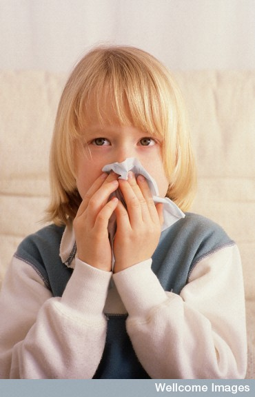 Students with flu will often be absent from school before visiting their GP. Could this help provide a early warning of flu in the wider community? Image by Anthea Sieveking, Wellcome Images.
